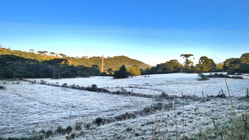 Outono se veste de branco no Vale dos Vinhedos da Serra Catarinense